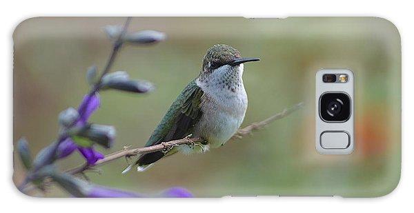 Hummingbird Galaxy Case by Tim Good