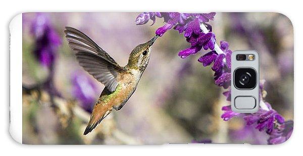 Hummingbird Collecting Nectar Galaxy Case by David Millenheft