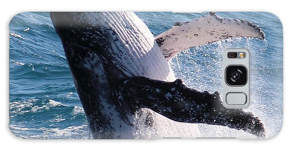 Humpback Whale Galaxy Case