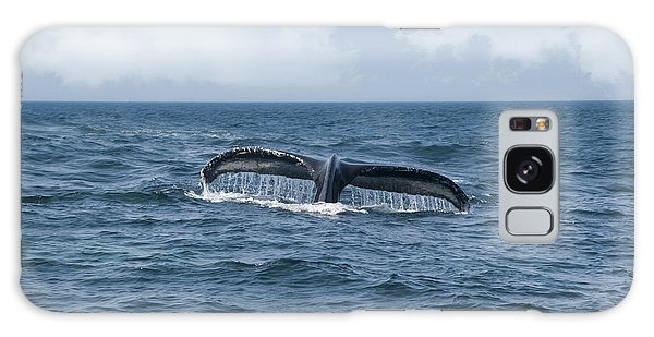 Humpback Whale Fin Galaxy Case