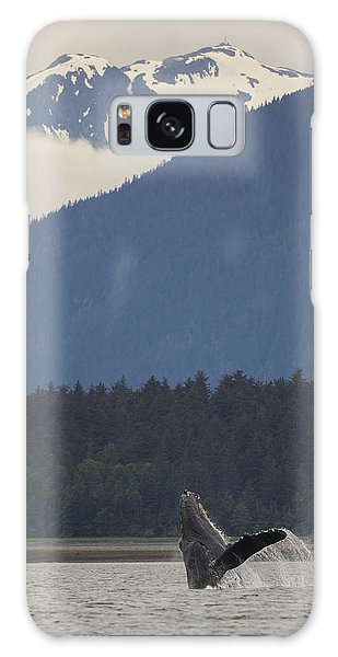 Humpback Whale In Alaska 73a6815  Galaxy Case by David Orias