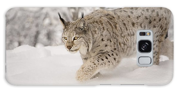 Hunting Lynx Galaxy Case