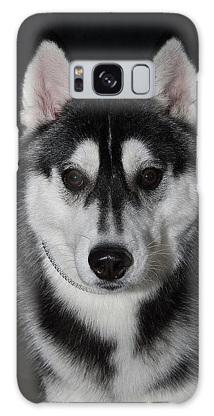 Husky Portrait Galaxy Case