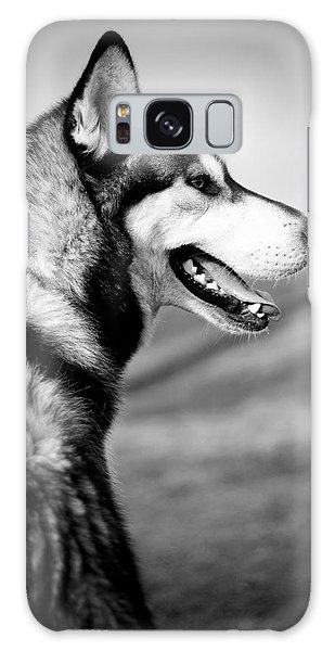 Husky Portrait Galaxy Case