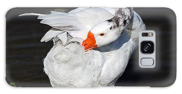 Hybrid Goose Grooming After A Swim Galaxy Case