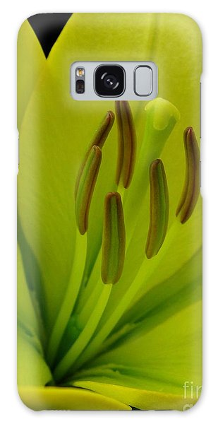 Hybrid Lily Named Trebbiano Galaxy Case by J McCombie