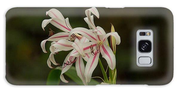 Hybrid Swamp Lily Galaxy Case