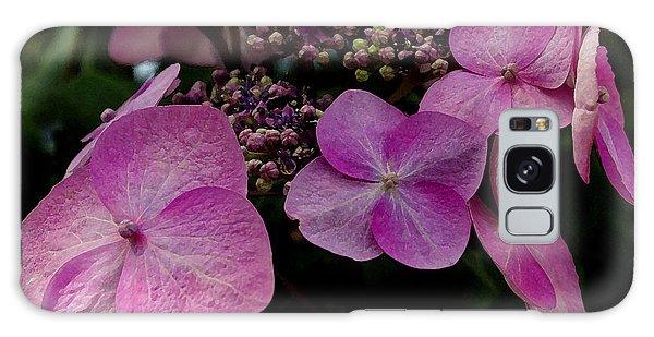 Hydrangea Flowers  Galaxy Case by James C Thomas