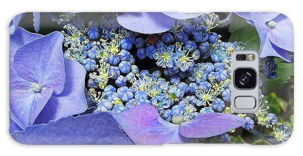 Hydrangea Blossom Galaxy Case