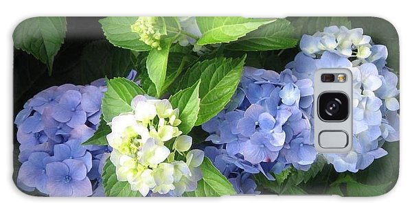 Galaxy Case featuring the photograph Hydrangea by Deb Martin-Webster
