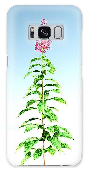 Hydrangea Paniculata... Galaxy Case by Tim Fillingim