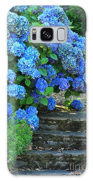 Hydrangea Steps 2 Galaxy Case by Jeanette French