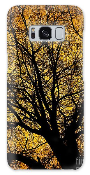 I Love Bare Trees Galaxy Case