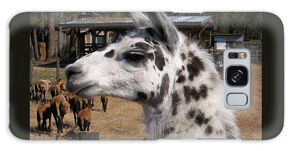 Mad Llama Rules Galaxy Case by Belinda Lee