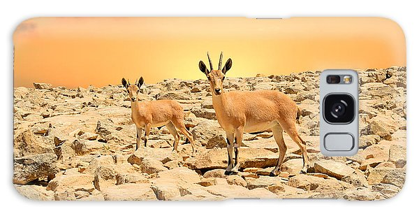 Ibexes And Sunset Galaxy Case