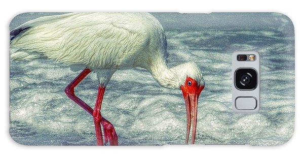 Ibis Feeding Galaxy Case