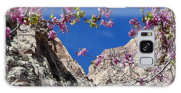 Ice Box Canyon In April Galaxy Case