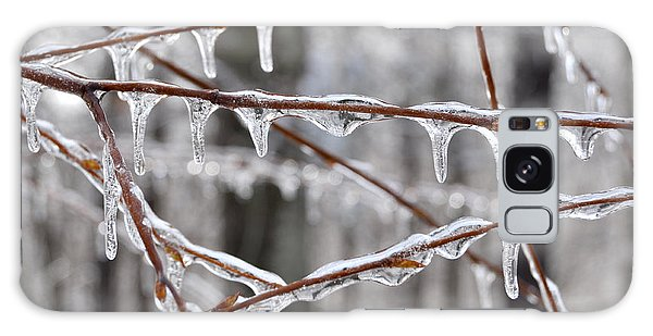 Ice Covered Branches Galaxy Case