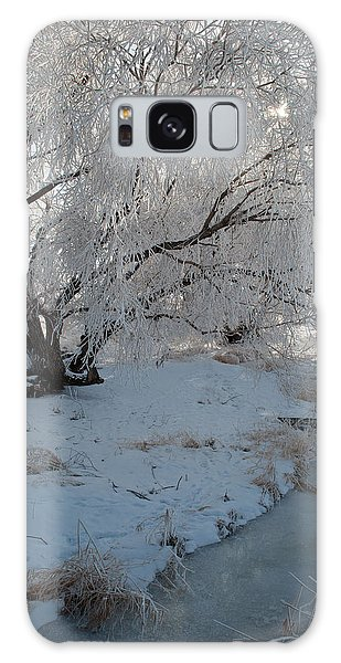 Ice Covered Tree And Creek In Montana Galaxy Case