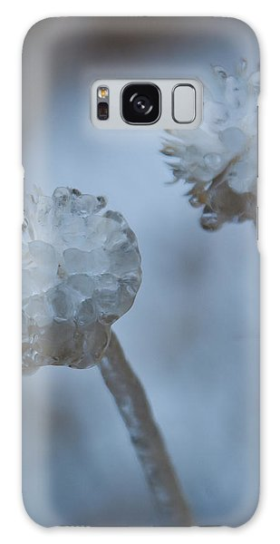 Ice-covered Winter Flowers With Blue Background Galaxy Case