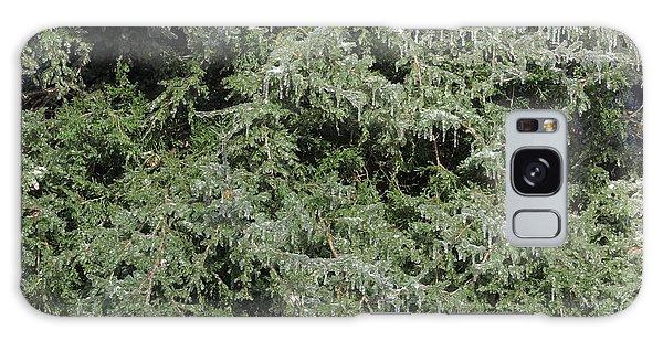 Ice On Eastern Red Cedar Galaxy Case