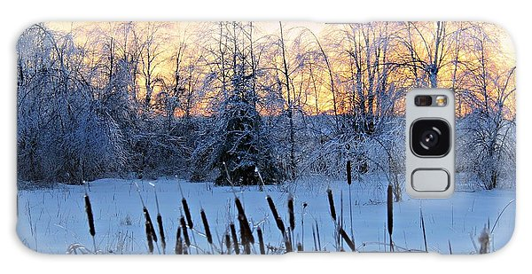 Ice Storm 2013/2 Galaxy Case by Michaela Preston