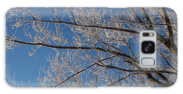 Ice Storm Branches Galaxy Case