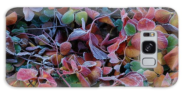 Iced Berries Galaxy Case