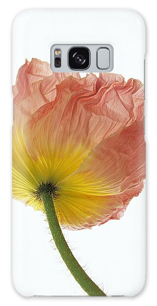 Iceland Poppy 1 Galaxy Case by Susan Rovira