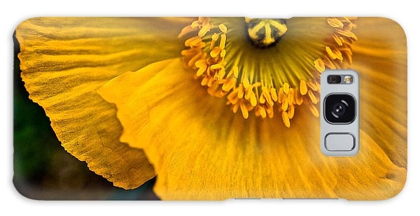 Iceland Poppy In Yellow Galaxy Case