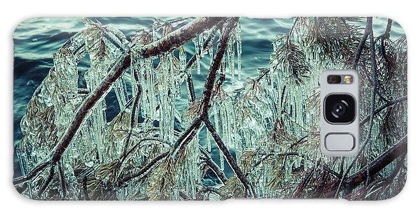 Icy Branch Galaxy Case