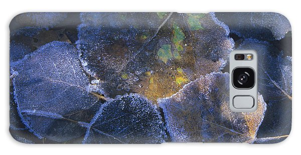 Icy Leaves Galaxy Case by Susan Rovira
