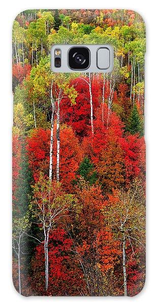 Idaho Autumn Galaxy Case