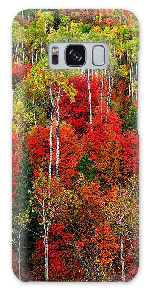 Idaho Autumn Galaxy Case