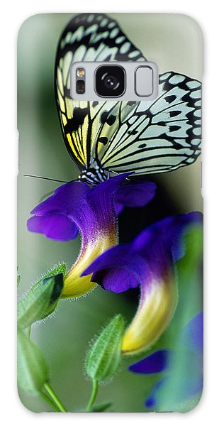 Idea Lecomoe Tree Nymph Butterfly On Galaxy Case