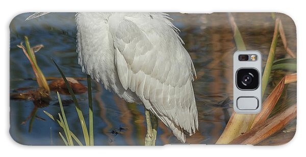 Immature Little Blue Heron Galaxy Case by Jane Luxton