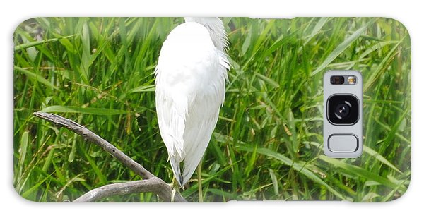 Immature Little Blue Heron On Watch Galaxy Case by Dan Williams