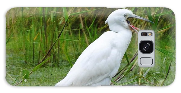 Immature Little Blue Heron Yawning Galaxy Case by Dan Williams