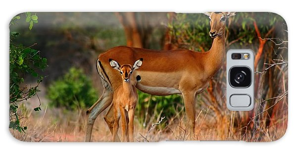 Impala And Young Galaxy Case by Amanda Stadther
