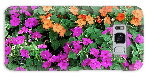 Voodoo Galaxy Case - Impatiens 'voodo Mix' Flowers by Sally Mccrae Kuyper/science Photo Library