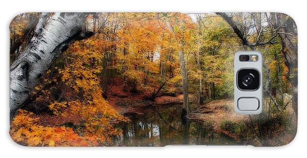 In Dreams Of Autumn Galaxy Case