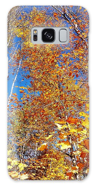 In The Forest At Fall Galaxy Case