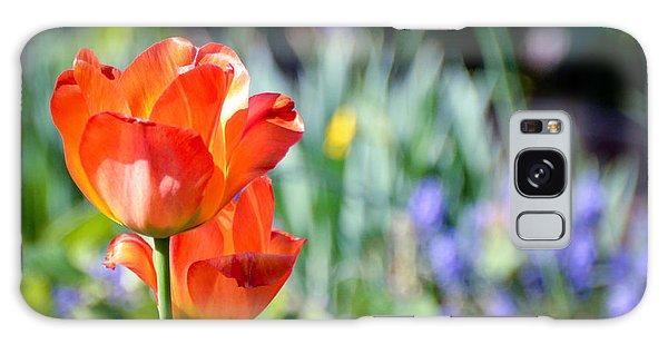In The Garden Galaxy Case by Kerri Farley