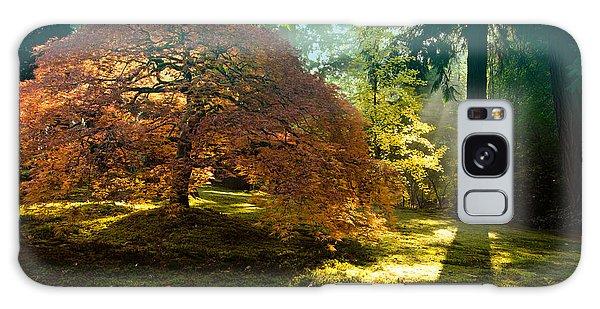 In The Gentle Autumn Light Galaxy Case by Don Schwartz