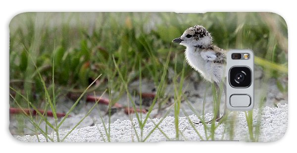 In The Grass - Wilson's Plover Chick Galaxy Case
