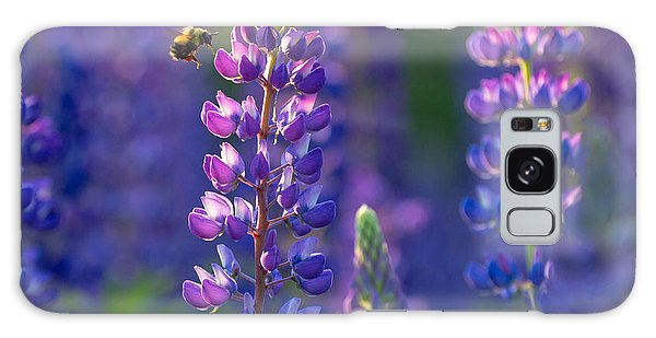 In The Land Of Lupine Galaxy Case