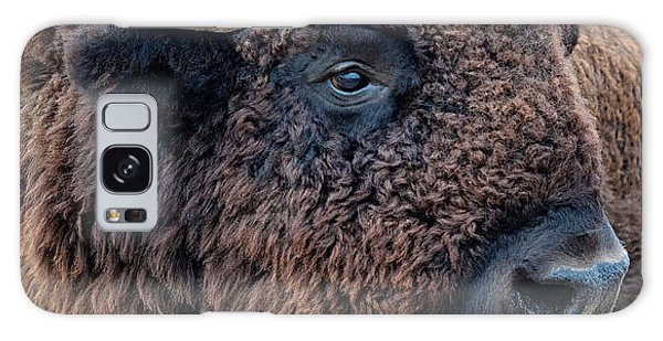 In The Presence Of  Bison - Yes Paint Him Galaxy Case