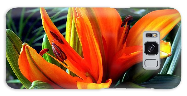 Clemson Galaxy Case - In The Tropics by Karen Wiles