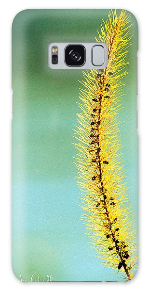 Plants Galaxy Case - In Time by Bob Orsillo