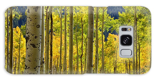 Independence Pass Fall Colors Galaxy Case by Ray Mathis